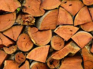 Premium seasoned firewood for sale