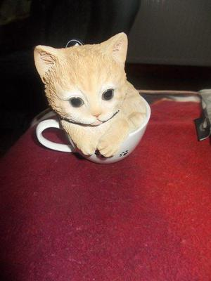 ginger cat in tea cup with paw printson the front and back