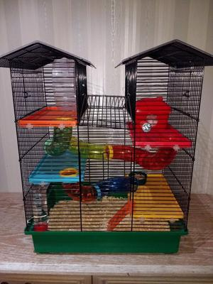 Hamster + EXTRA LARGE Cage + Accessories