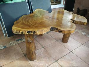 Unique Tree Trunk coffee table