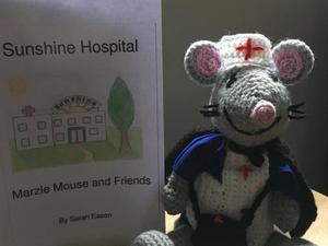 Sunshine Hospital (mental health book for children)