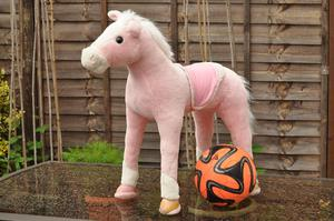 Childs sit on horse