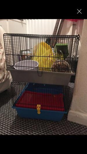 HAMSTER CAGES AND ACCESSORIES REDUCED!!!!