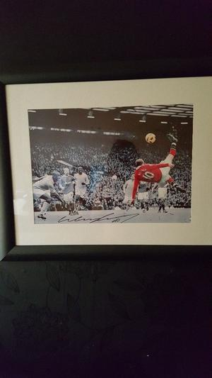 Rooney signed picture very good condition