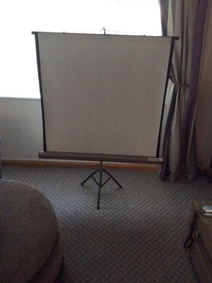 Bell and Howell tripod screen