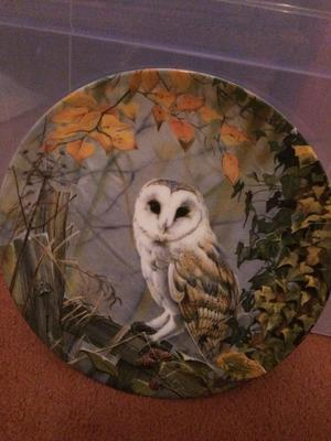 Royal Doulton 'On Silent Wings' authentic collectors plate