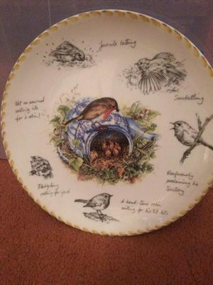 Wedgwood 'The Robin' collectors plate