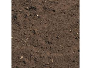 FREE TOP SOIL (100 TON AVAILABLE) in Keighley