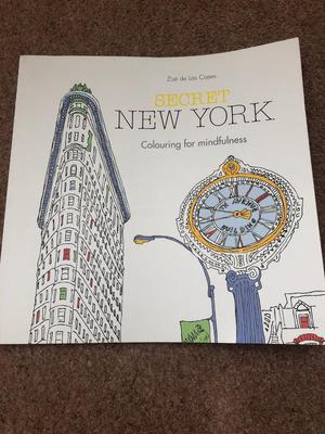 Brand new New York colouring book