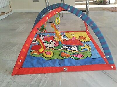 Tiny Love Gymini Baby Mat Play Gym