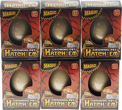 Set of 6 Grow Your Own Dinosaur Animal Hatching Novelty Eggs