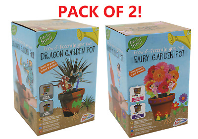 2 Pack Grow & Decorate Your Own Dragon & Fairy Garden Plants