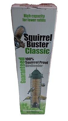 Squirrel Buster Classic squirrel proof bird feeder marauders