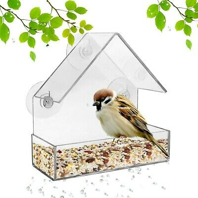 2 pk GLASS WINDOW BIRD FEEDER SEED PEANUT HANGING SUCTION