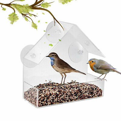 Glass Window Bird Feeder Perspex Table Seed Peanut Hanging