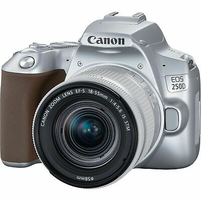Canon EOS 250D mm f/4-5.6 IS STM Silver Multi ship from
