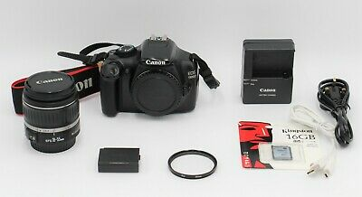 Canon EOS D 12.2MP SLR + Kit with EF-S mm II +