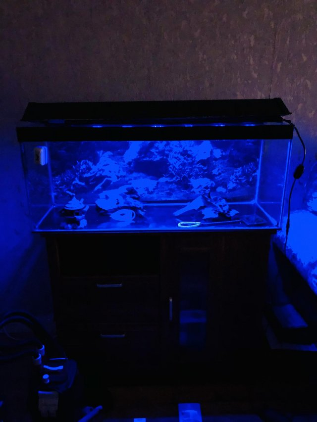 FISH TANK 92cm X 30cm X 38cm + STAND + PUMP HEATER + LED LIG