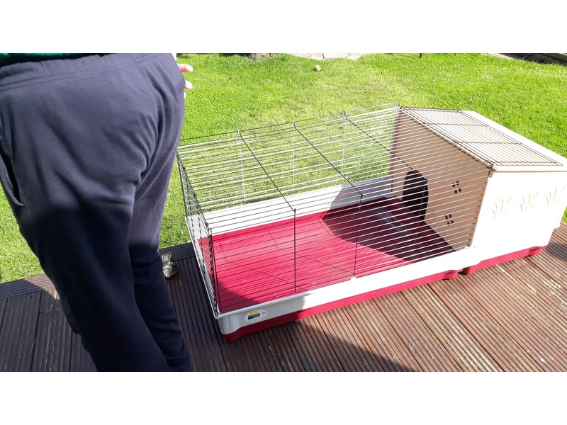 Extra large Indoor guinea pig cage for sale
